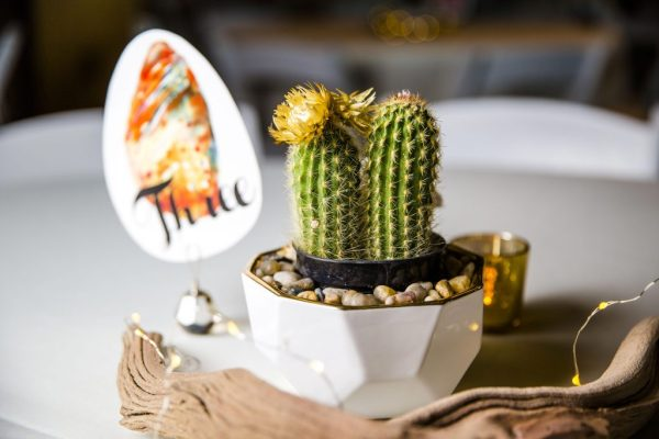 Cactus and ghost wood centerpiece for a Texas wedding designed by Jessica Ormond Events. Caitlin & Ryan Photography.