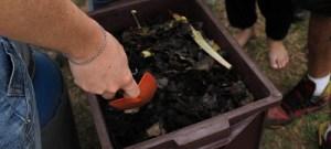 Restos de alimentos adubam hortas e jardins no campus de Ribeirão Preto
