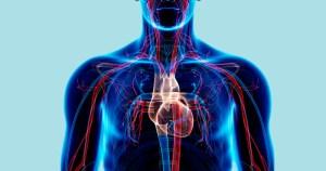Doença genética que eleva colesterol acomete 790 mil brasileiros