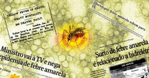 Pesquisa investiga epidemia midiática de febre amarela
