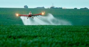 Renovação de licença para uso de herbicida pela UE gera polêmica