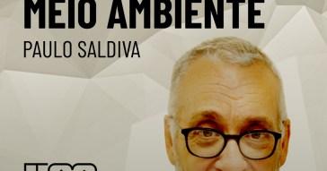 pod_colunistas_paulo_saldiva