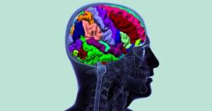 USP implementa técnica de cateterismo de artéria cerebral