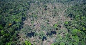 Intervenções na Amazônia maquiam problemas, aponta pesquisador