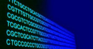 Instituto de Biociências realiza evento sobre aconselhamento genético