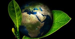 Para aproveitar biodiversidade, Brasil deve investir em pesquisa