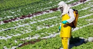 Brasil é o maior consumidor de agrotóxico do mundo