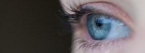 Ver mosquitinhos pode ser problema no fundo dos olhos