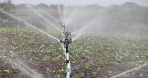 USP Lecture aborda importância da qualidade da água na agricultura