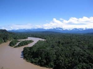 Preservação da Amazônia é um assunto sério, alerta pesquisador