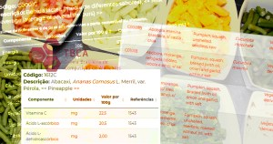 Aplicativo traz versão atualizada da tabela brasileira de alimentos