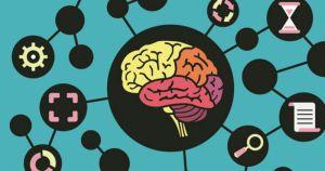 Estudo testará memória visual e de longo prazo de voluntários
