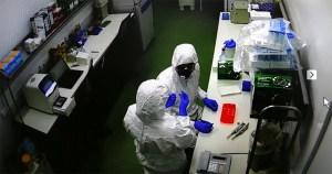 Laboratórios da USP se unem para acelerar diagnóstico do coronavírus