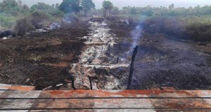 Número de incêndios no Pantanal é 440% maior que a média dos últimos anos