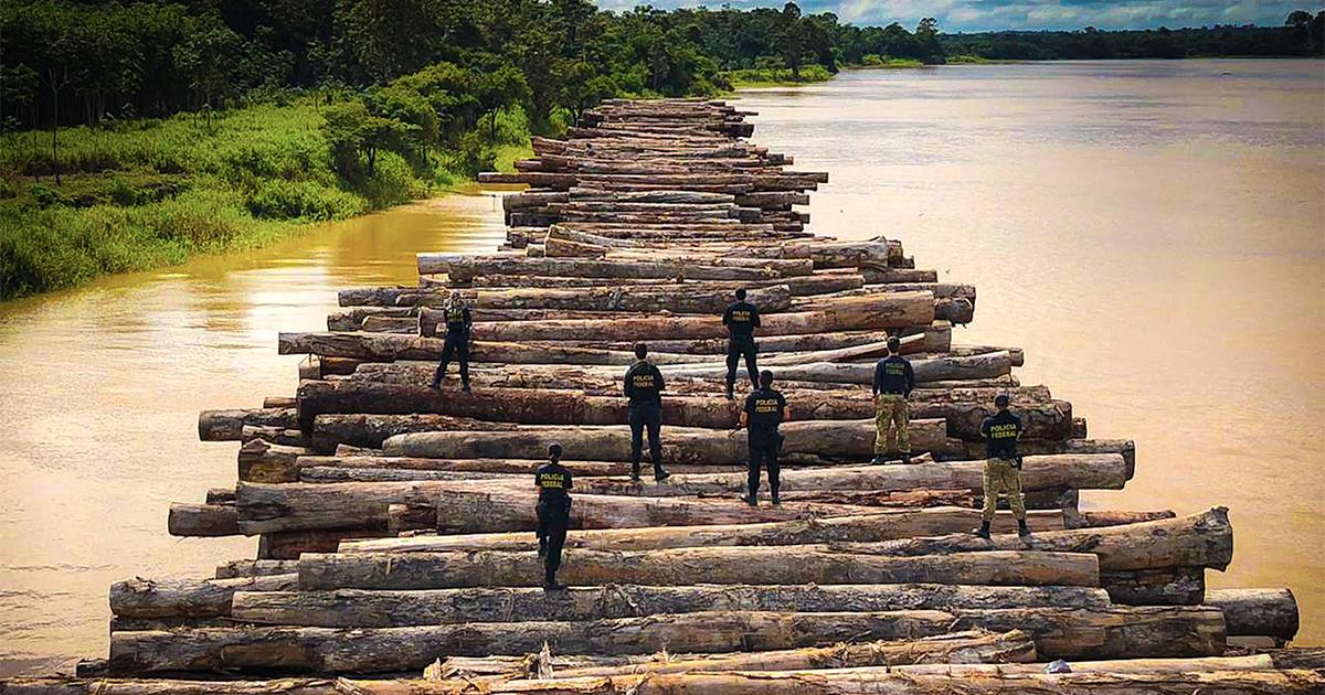 """Um dos países mais antiambientais do mundo"""" – Jornal da USP"""