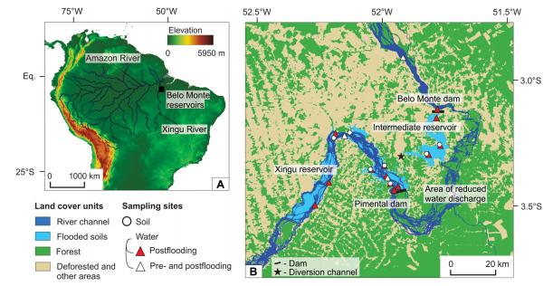 (A) Bacia do rio Amazonas e a localização do Complexo da Usina Hidrelétrica de Belo Monte. (B) Mapas de uso da terra representando áreas inundadas, o canal original do rio e amostras de sítios para avaliar pré e pós-represamento