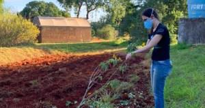 Projeto premiado de alunos da USP vai promover nutrição saudável com horta comunitária