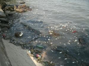 Pequenos materiais também poluem o ambiente marinho