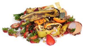A importância da reciclagem de alimentos