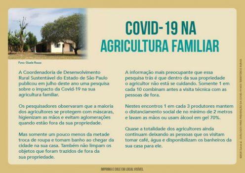 20201208_covid_territorios_rurais3