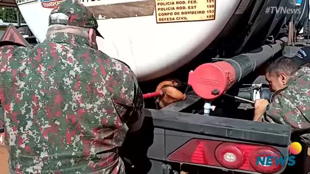 Caminhoneiro flagra tamanduá pegando 'carona' no chassi da carreta