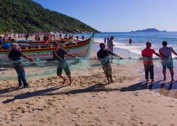 Fotos: Gerson Fior / Divulgação
