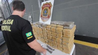 Photo of Brasil: Polícia Federal registra recorde de apreensão de drogas em 2013