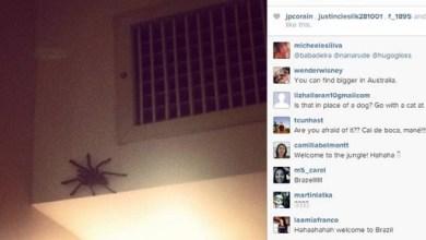 """Photo of """"Não vou dormir"""", escreve jogador australiano por causa de aranha no quarto em Vitória"""