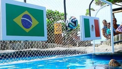Photo of Copa 2014: México é escolhido por 'tartaruga palpiteira' no jogo contra o Brasil