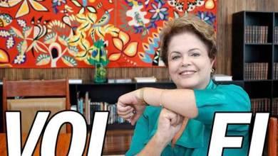 Photo of Após seis dias fora do ar, Dilma Bolada volta à ativa nas redes sociais