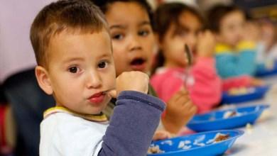 Photo of Brasil e mais 12 países são reconhecidos pela FAO por combate à fome