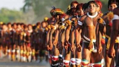 Photo of MPF em Ilhéus recorre de sentença que extinguiu ação de indenização por danos morais a índios tupinambás em São José da Vitória