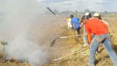Photo of Governo inicia Operação Bahia sem Fogo 2015; Chapada Diamantina será beneficiada