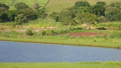 Photo of MPF e MPBA querem anulação de decreto baiano que flexibiliza o licenciamento ambiental