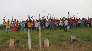 Photo of MST segue jornada de lutas do Abril Vermelho na Bahia com 22 áreas ocupadas