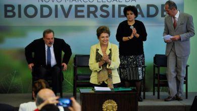 Photo of Dilma sanciona lei que regulamenta acesso à biodiversidade