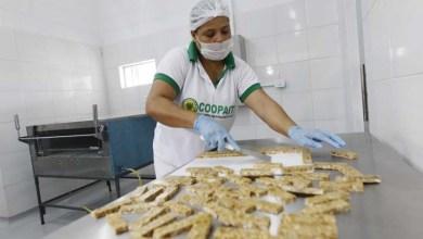 Photo of Chapada: Agroindústria de barra de cereais promove desenvolvimento da agricultura familiar em Iaçu