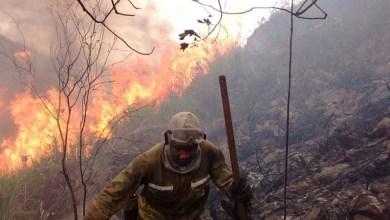 Photo of Governo decreta situação de emergência em 51 municípios com áreas atingidas por incêndios florestais