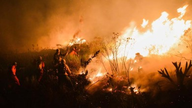 Photo of Brigadistas contêm fogo no Parque Nacional da Chapada Diamantina e seguem monitoramento; entenda a situação