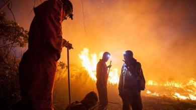 Photo of Chapada: Brigada critica falta de suporte da prefeitura de Lençóis a voluntários que combatem fogo