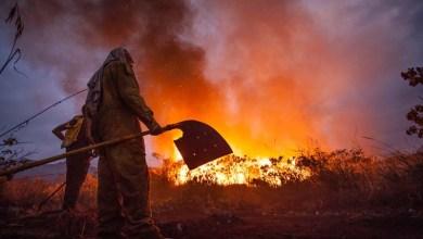 Photo of Brigada de Lençóis volta a reclamar de ações do poder público para combater o fogo; prefeitura rebate