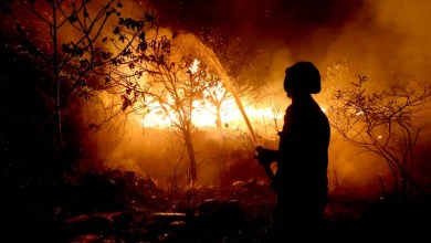 Photo of Deputado estadual diz que governo foi letárgico com questão dos incêndios na Chapada Diamantina