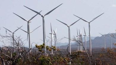 Photo of Empresa de pás eólicas vai gerar até quatro mil empregos na Bahia