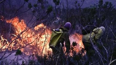 Photo of Rotina de combate ao fogo na Chapada Diamantina vira documentário; confira aqui