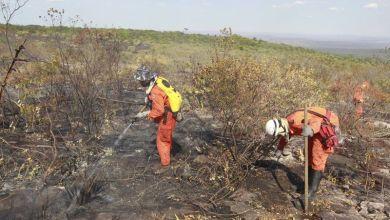 Photo of Bombeiro é desligado da equipe que atua no fogo na Chapada Diamantina por cobrar diárias