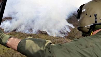 Photo of Chapada: Uneb de Seabra realiza debate sobre atuação da imprensa nos incêndios florestais de 2015