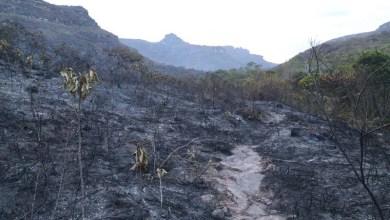 Photo of Fotos: Fogo na Chapada Diamantina deixa rastro de destruição; brigadistas seguem combatendo