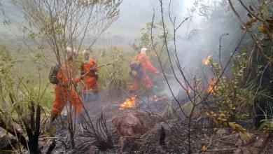 Photo of Brigadistas do Prevfogo/Ibama seguem atuando no combate ao fogo na Chapada Diamantina