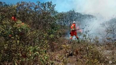 Photo of Chapada: Fogo na Serra da Chapadinha é controlado por moradores e brigadistas voluntários
