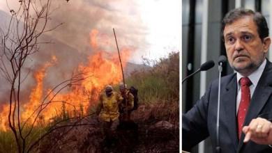 Photo of Senador baiano chama atenção para os incêndios na Chapada Diamantina e cobra investimento federal
